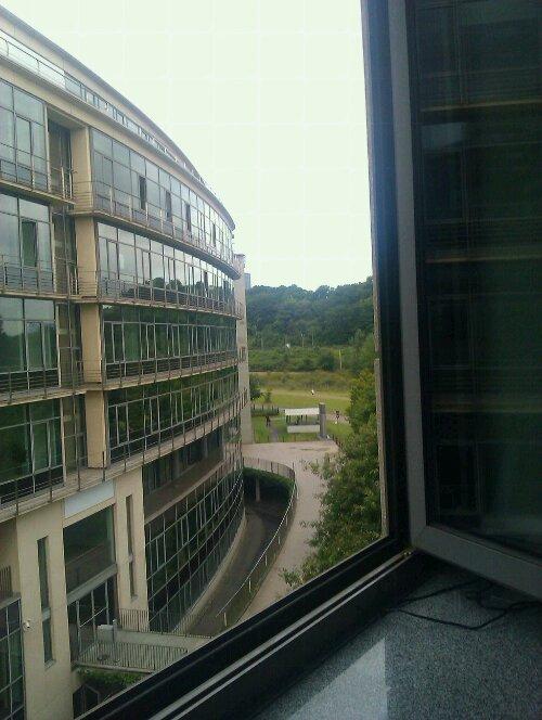 Blick aus dem Büro