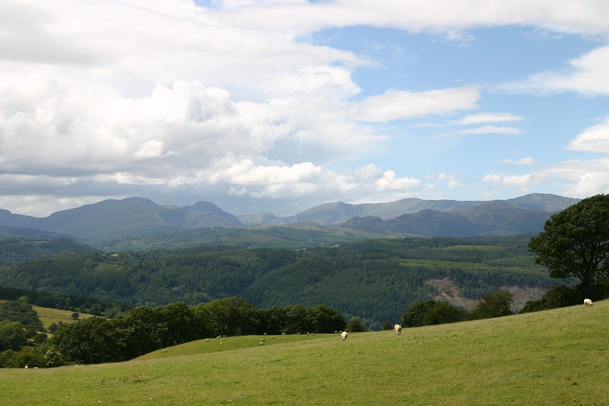 Wales2008_0331